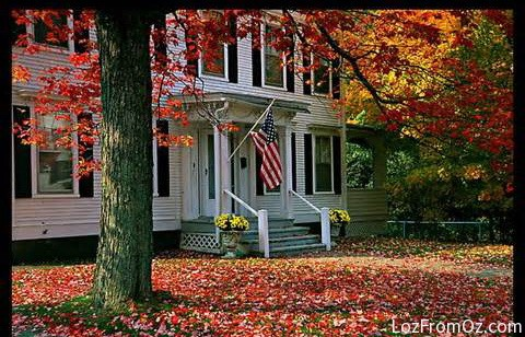 2013 Autumn Leaves on the East Coast – Countdown