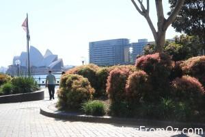 Sydney Quay