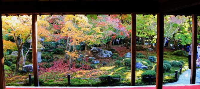 2018 Incredible Japan – Day 15 Part 3